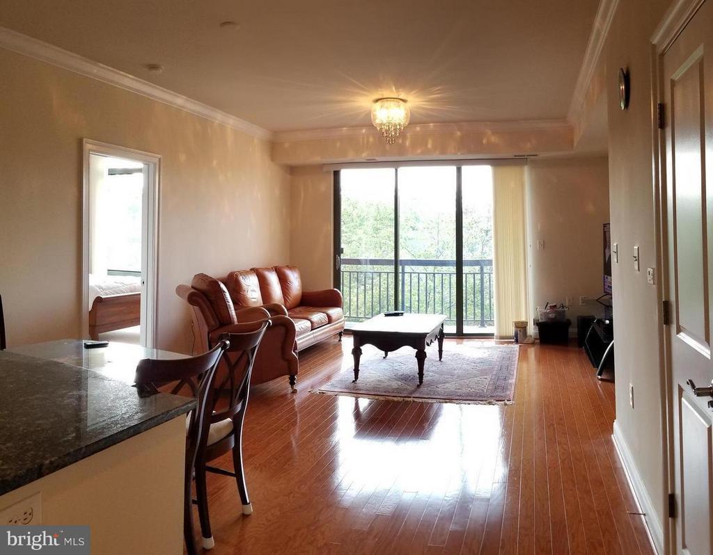 Spacious and Bright Living room - 3625 10TH ST N #401, ARLINGTON