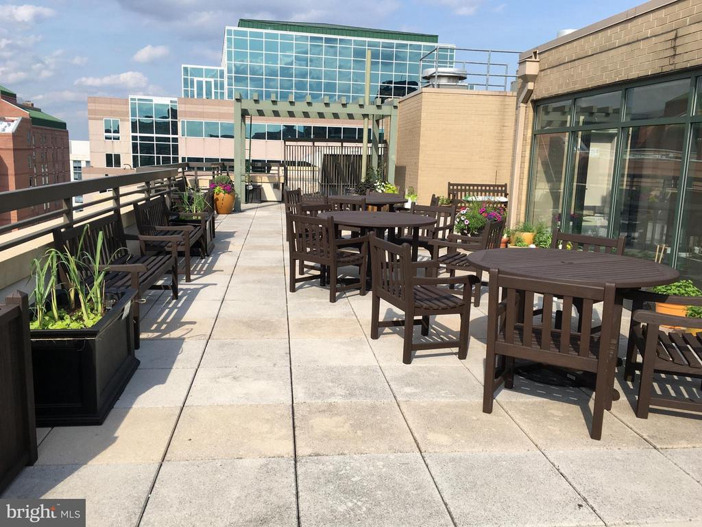 Roof Terrace with Great View - 3625 10TH ST N #401, ARLINGTON