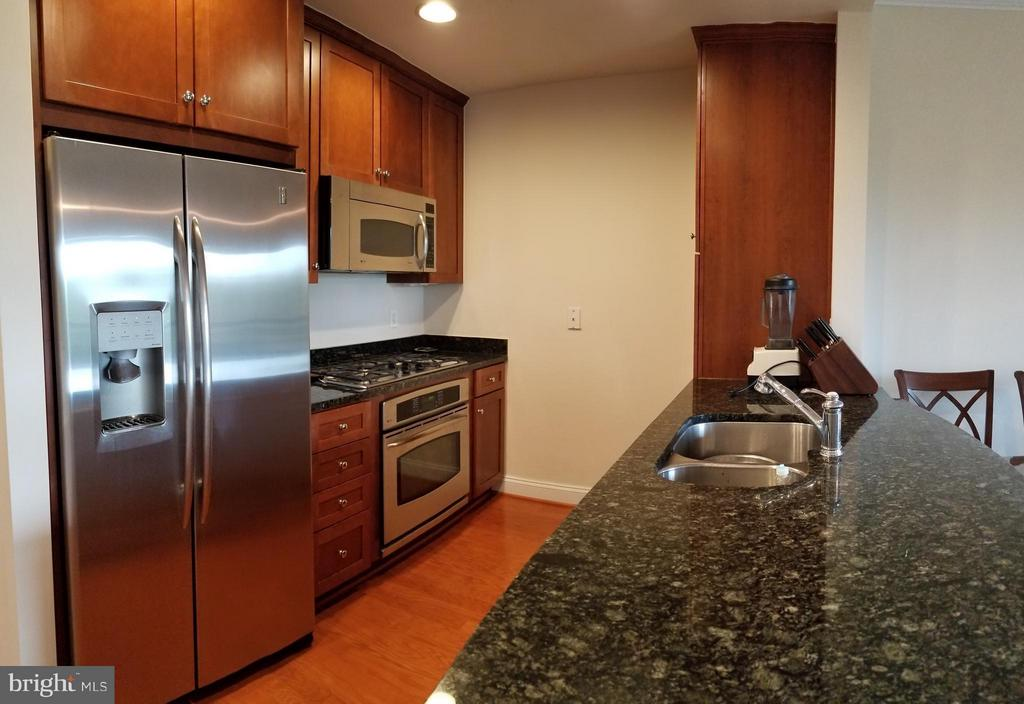 Granite Counter Top, Stainless Steel Appliances - 3625 10TH ST N #401, ARLINGTON