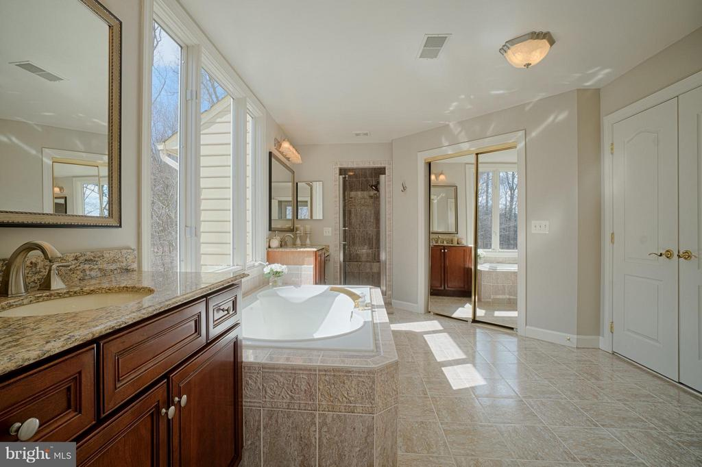 Granite counter-top, frame less shower door. - 40577 BLACK GOLD PL, LEESBURG