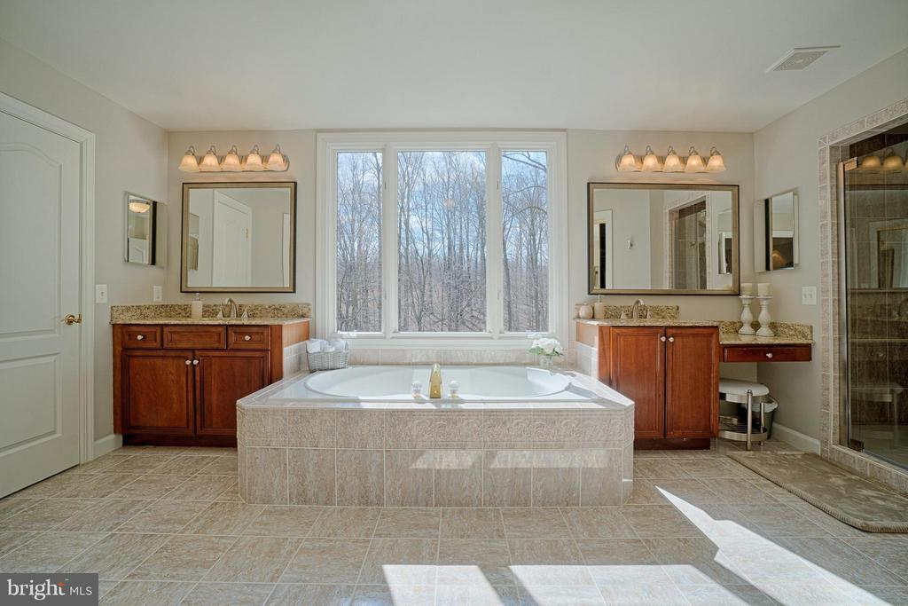 Private Master Bath. Only the birds can see in. - 40577 BLACK GOLD PL, LEESBURG