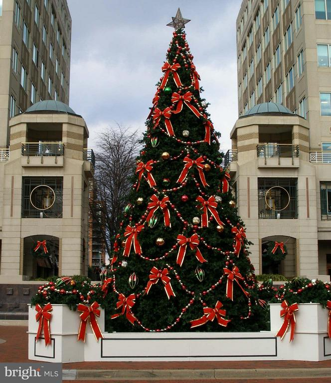 Reston Town Center Holiday Time - 11990 MARKET ST #917, RESTON