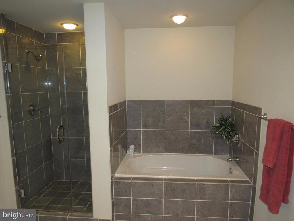 Soaking tub + Separate shower - 3625 10TH ST N #803, ARLINGTON
