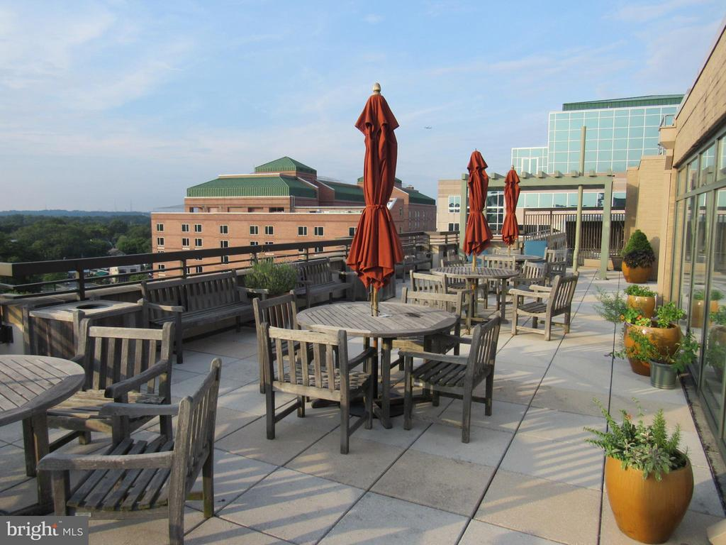 Rooftop patio with views for residents - 3625 10TH ST N #803, ARLINGTON