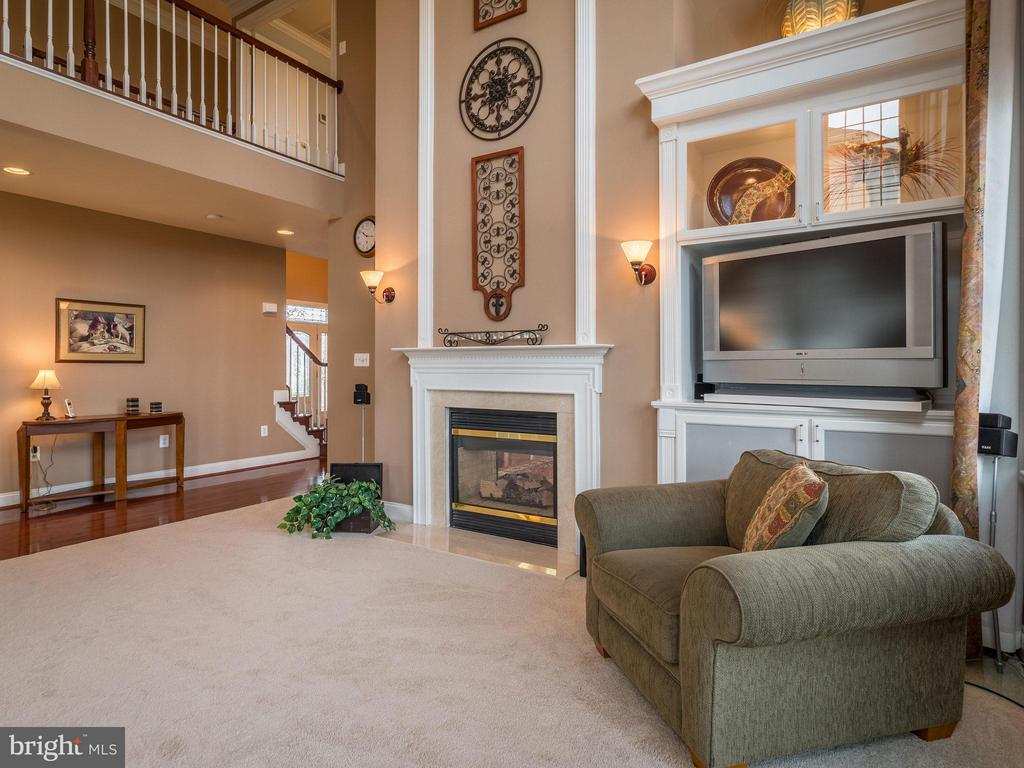 Family Room - 19825 BETHPAGE CT, ASHBURN