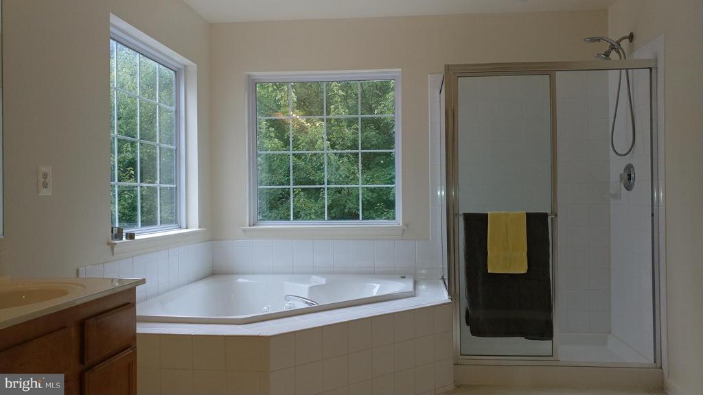 Bath (Master) - 2800 EMIL CT, WOODBRIDGE