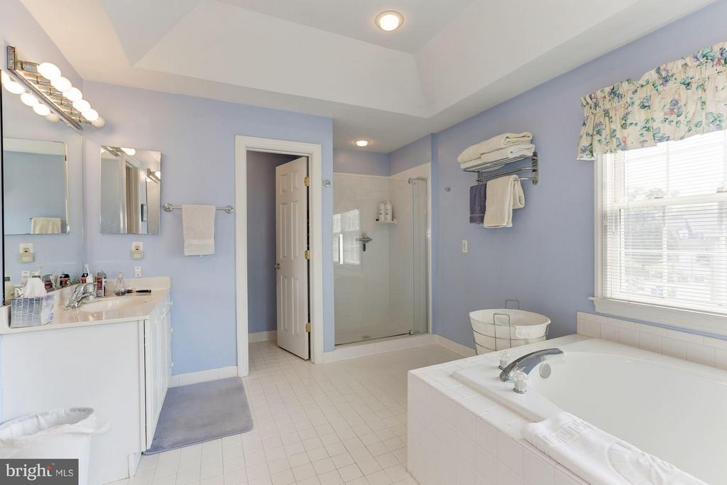 Bath (Master) - 5610 WILLOW CROSSING CT, CLIFTON