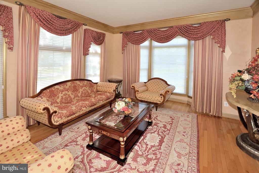 Living Room - 18749 UPPER MEADOW DR, LEESBURG
