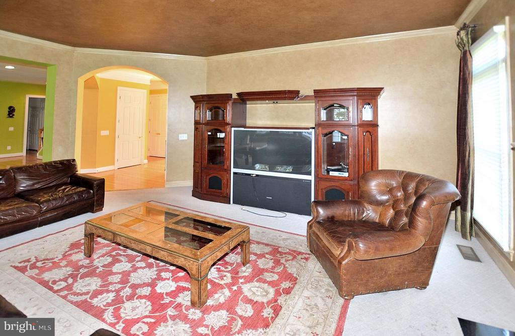 Family Room - 18749 UPPER MEADOW DR, LEESBURG