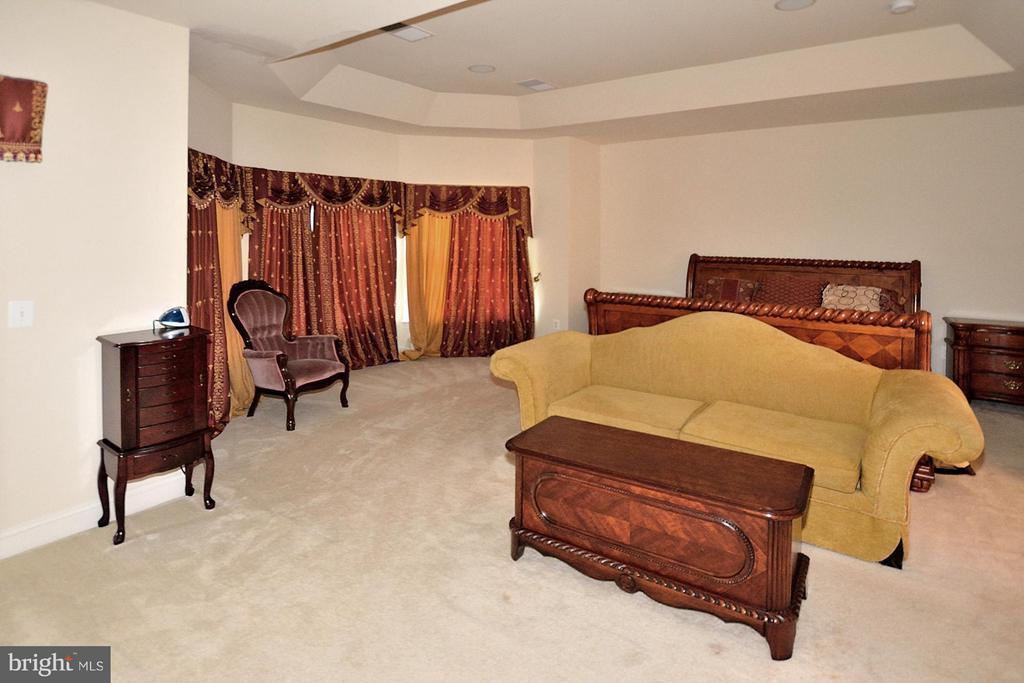 Bedroom (Master) - 18749 UPPER MEADOW DR, LEESBURG