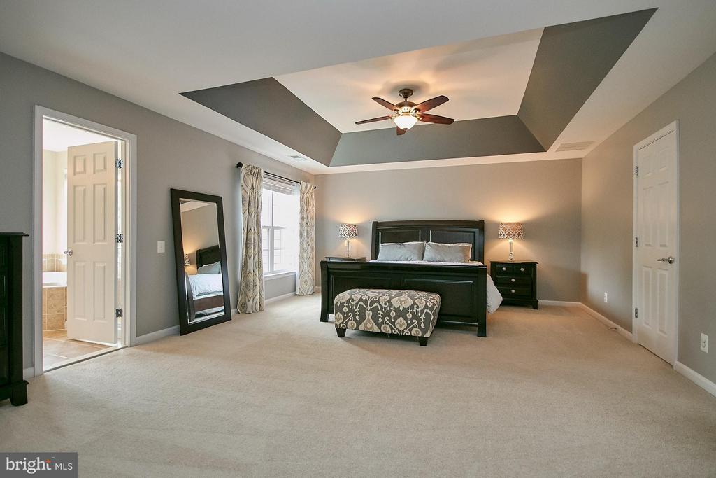 Spacious Master Bedroom with Tray Ceiling - 42684 KEILLER TER, ASHBURN