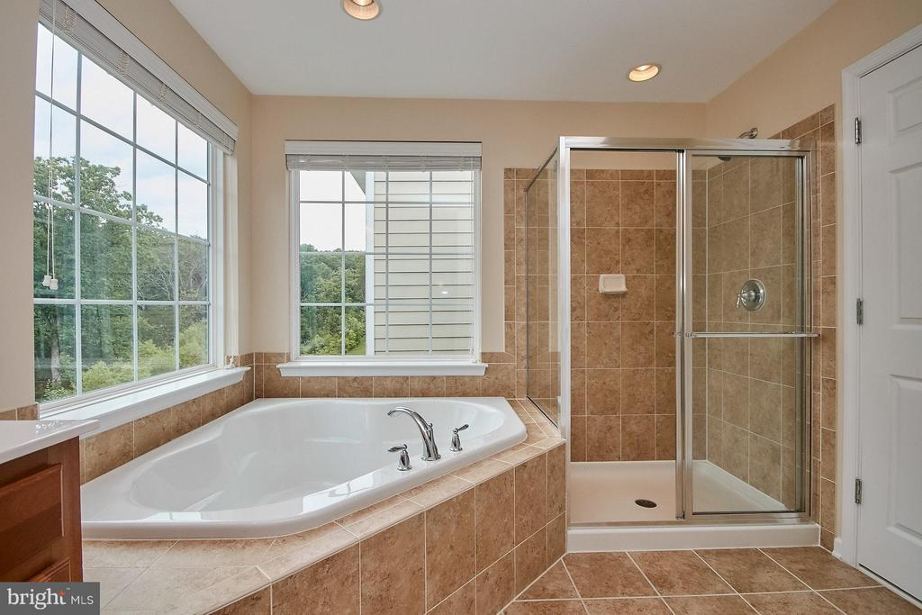 Master Soaking Tub & Separate Shower - 42684 KEILLER TER, ASHBURN