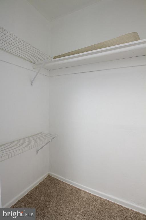 Walk-in hallway closet - 10025 MOSBY WOODS DR #318, FAIRFAX