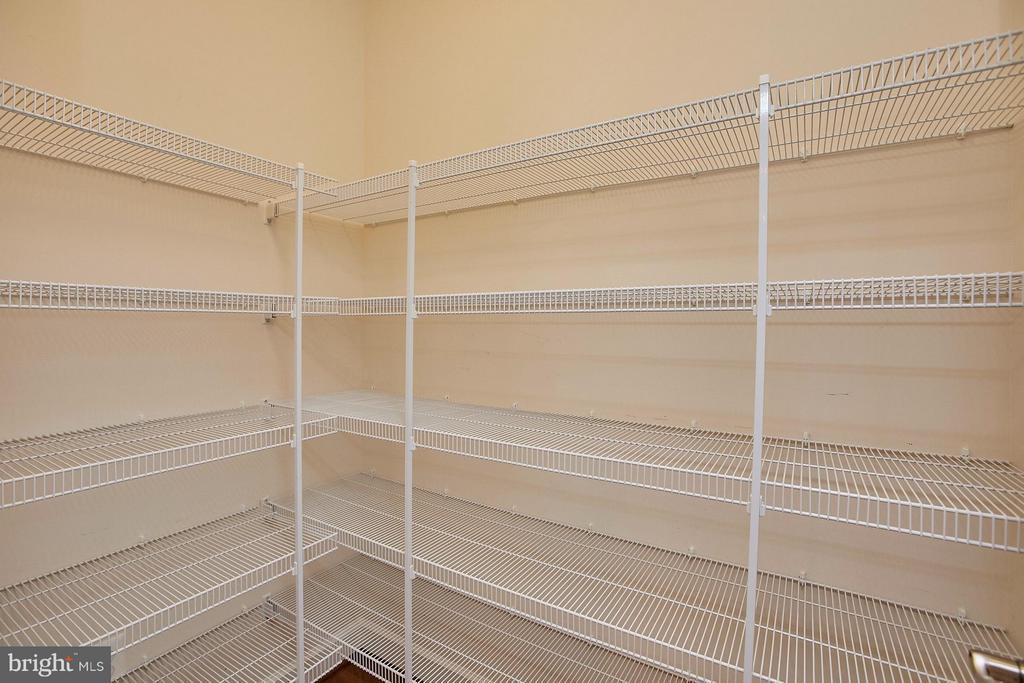 Large walk-in pantry - 16636 DANRIDGE MANOR DR, WOODBRIDGE