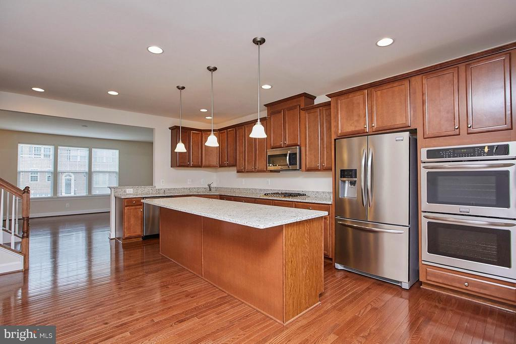 Gourmet kitchen with upgraded appliances - 16636 DANRIDGE MANOR DR, WOODBRIDGE