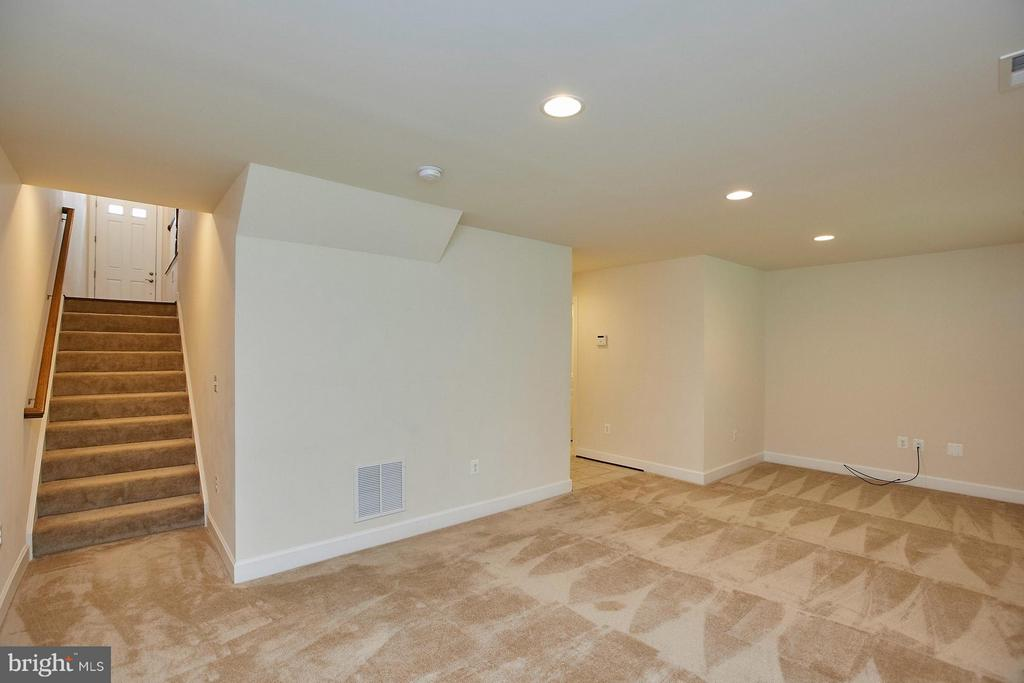 Finished walk out lower level with large Family Rm - 16636 DANRIDGE MANOR DR, WOODBRIDGE