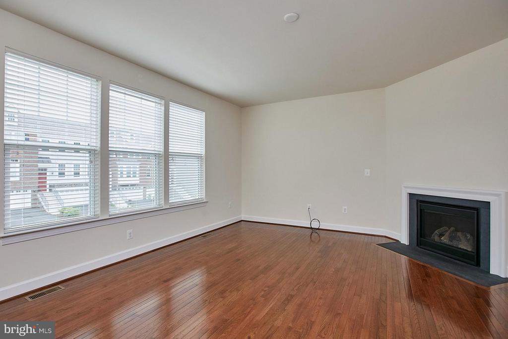 Living room has a gas fireplace - 16636 DANRIDGE MANOR DR, WOODBRIDGE