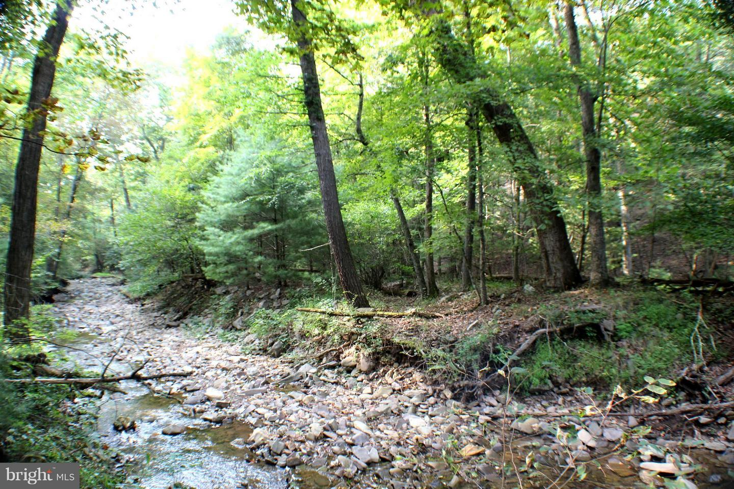 Land for Sale at 254 Acres Off Camp Run Rd Fort Seybert, West Virginia 26802 United States
