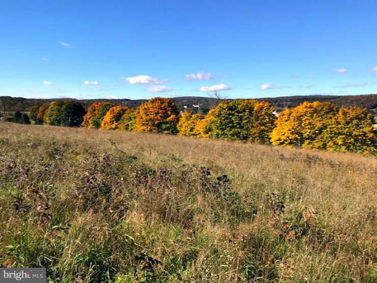 Land for Sale at Shermans Dale, Pennsylvania 17090 United States