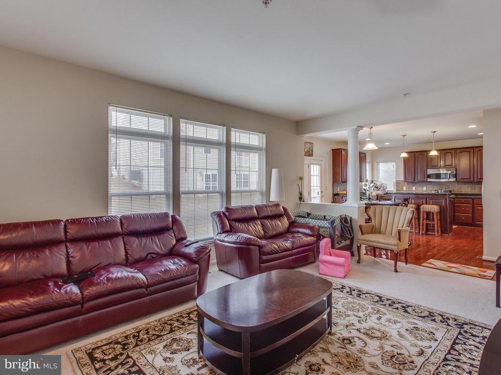 Family Room - 1518 MISSISSIPPI AVE SE, WASHINGTON