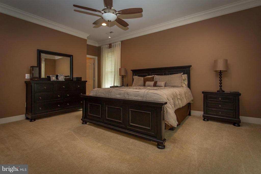 Bedroom (Master) - 1200 PRINCE EDWARD ST, FREDERICKSBURG