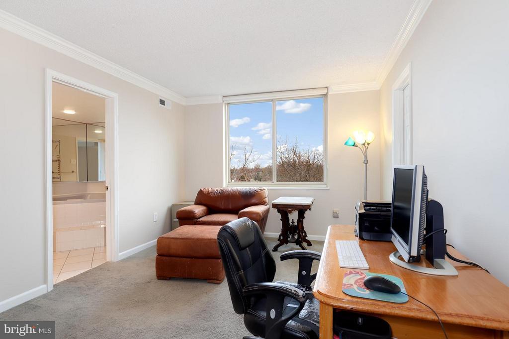 Bedroom (Master) - 1515 ARLINGTON RIDGE RD #702, ARLINGTON