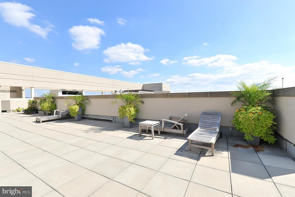 Tan/ relax on the roof - 811 4TH ST NW #521, WASHINGTON