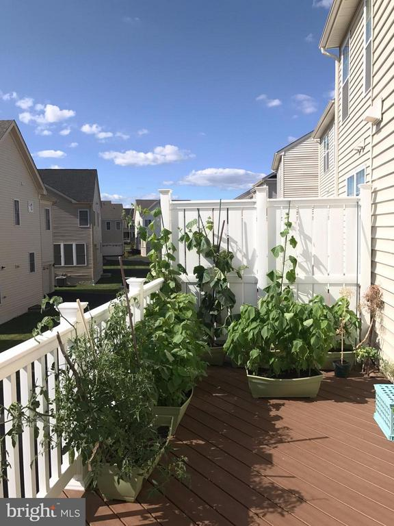 Exterior (Rear) - 22605 CAMBRIDGEPORT SQ, ASHBURN