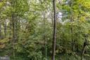 Overlooking Glencarlyn Park - 5041 7TH RD S #102, ARLINGTON