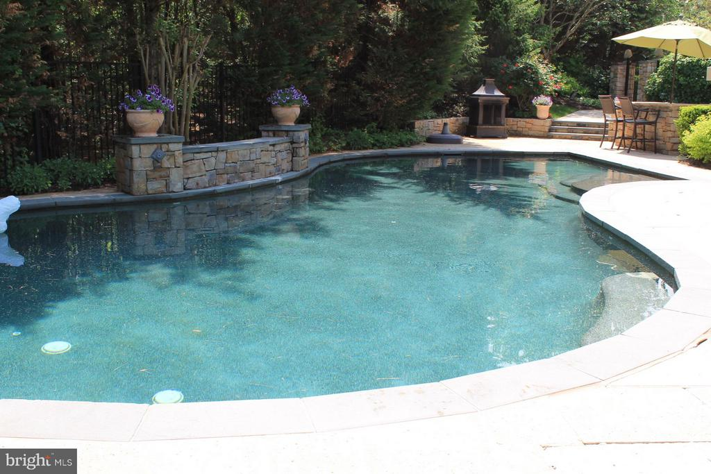 Sumer Fun in the Fabulous Pool with Water Falls - 3013 ROSE CREEK CT, OAKTON