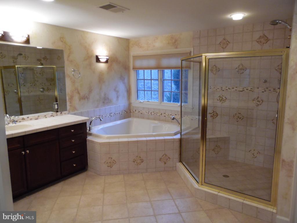 Bath (Master) - 23077 OGLETHORPE CT, ASHBURN