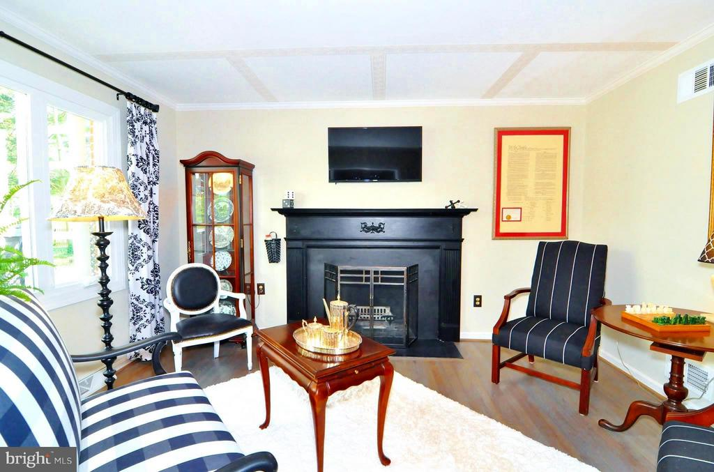 Family Room w wood burning fireplace - 23470 DOVER RD, MIDDLEBURG
