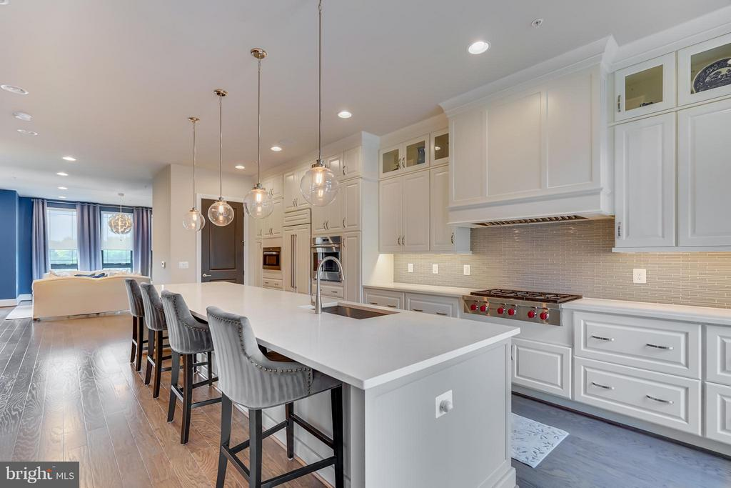 Gourmet Kitchen with Wolf Appliance - 44661 BRUSHTON TER, ASHBURN