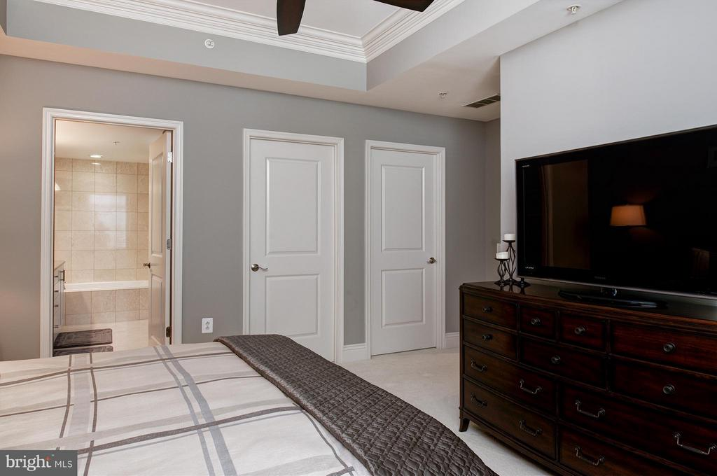 Master Bedroom with large walk-in closet - 11990 MARKET ST #1801, RESTON