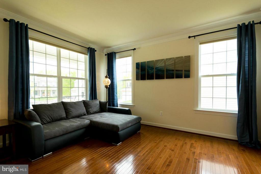 Living Room - 15111 BARNES EDGE CT, WOODBRIDGE