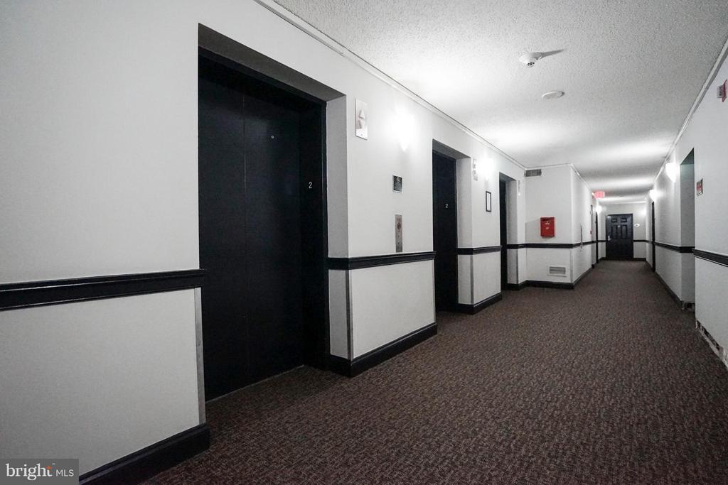 Hall way - 1001 N RANDOLPH ST #213, ARLINGTON