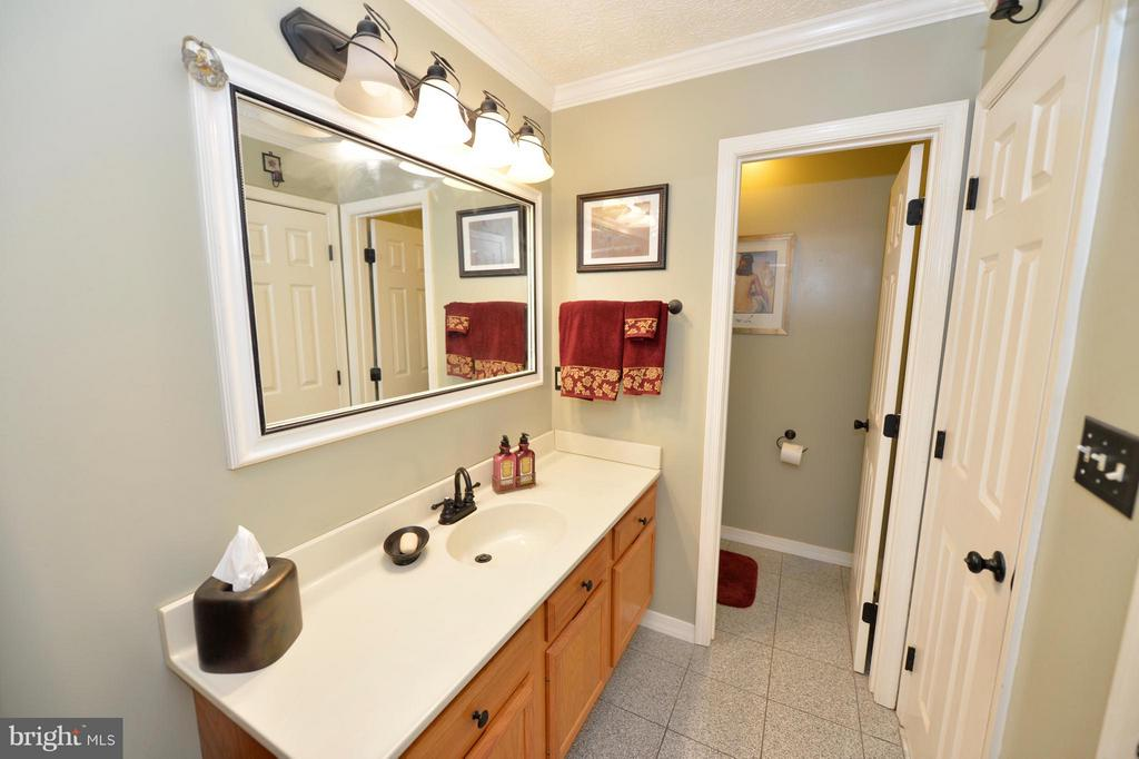 Main Level Master Bath View 2 - 39 CONIFER CT, HARPERS FERRY