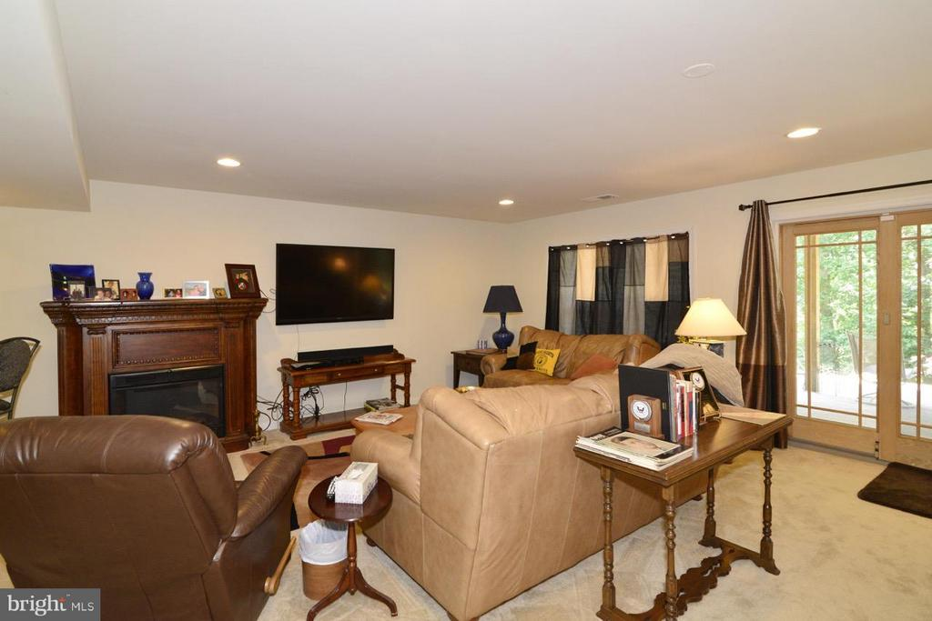 Rec Room Lower Level - 21203 NED DR, ASHBURN