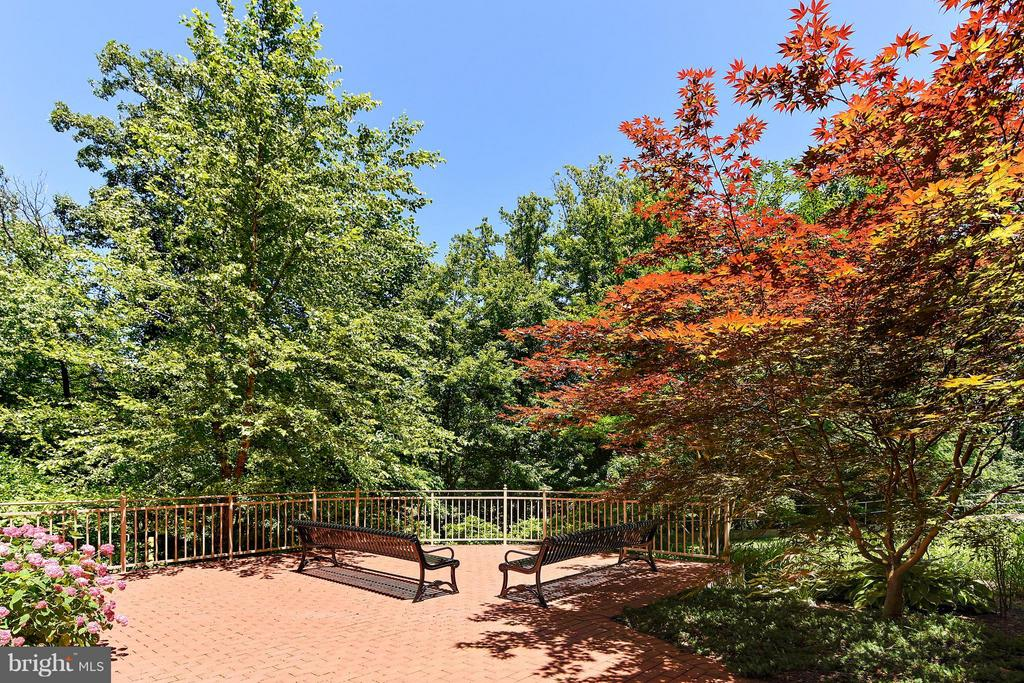 Exterior (General) - 4480 MARKET COMMONS DR #205, FAIRFAX