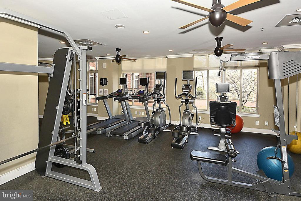Gym - 4480 MARKET COMMONS DR #205, FAIRFAX