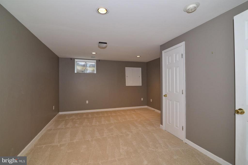 Basement - 11205 SILENTWOOD LN, RESTON