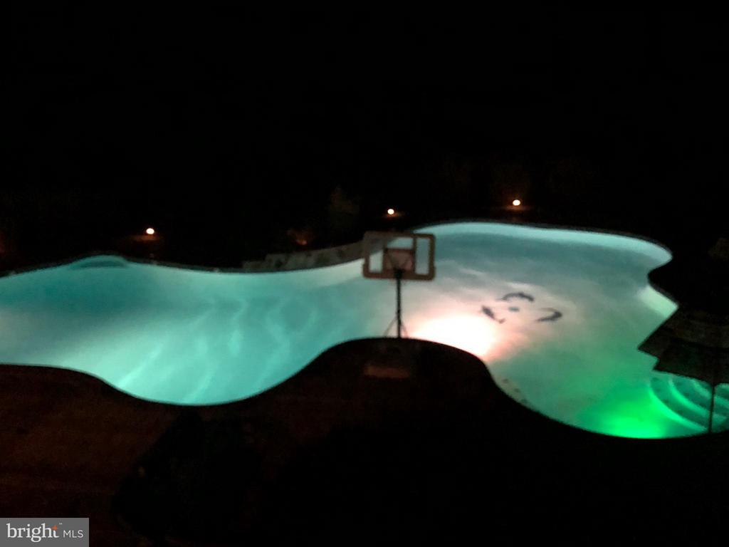 Private nighttime swimming & party time! - 15747 FOLEYS MILL PL, HAYMARKET