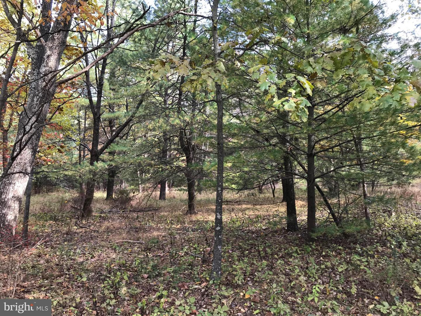 Land for Sale at Corls Ridge Rd South Mountain, Pennsylvania 17261 United States