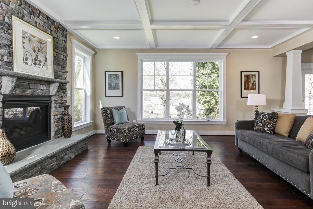 Family Room - LOT 6 PHASE 2 TOUCHSTONE FARM LN, PURCELLVILLE