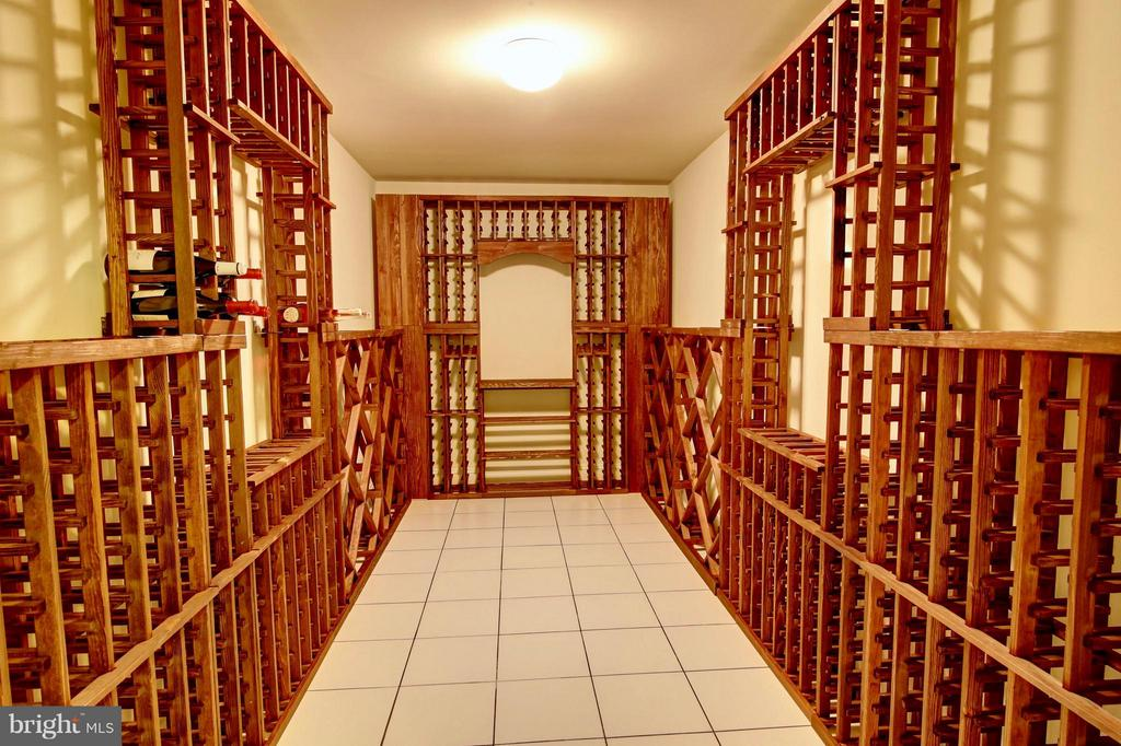 Basement Wine Cage - 41731 PUTTERS GREEN CT, LEESBURG