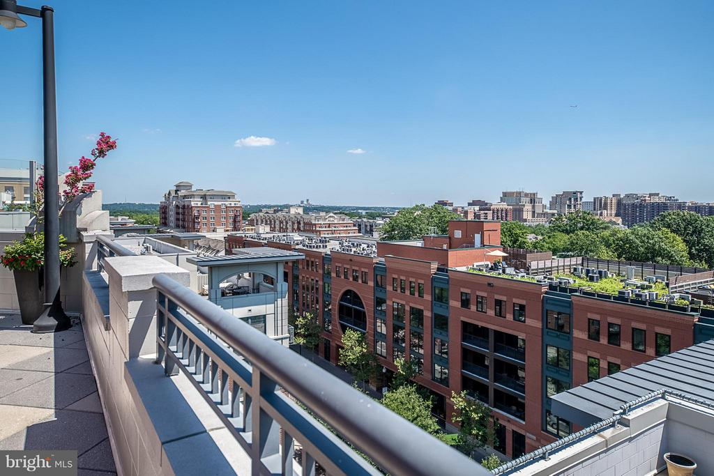 Rooftop pool, grill area, and more - 1021 GARFIELD ST N #236, ARLINGTON