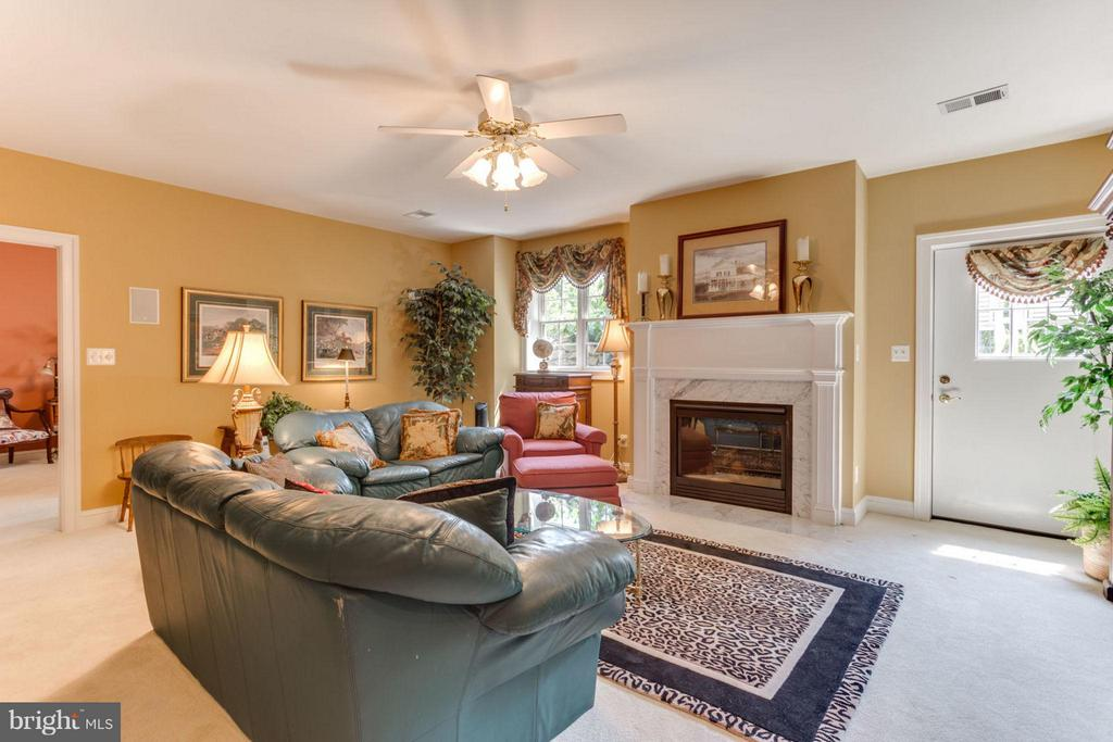 Lower Level Family Room with 2nd Gas Fireplace - 35191 DORNOCH CT, ROUND HILL