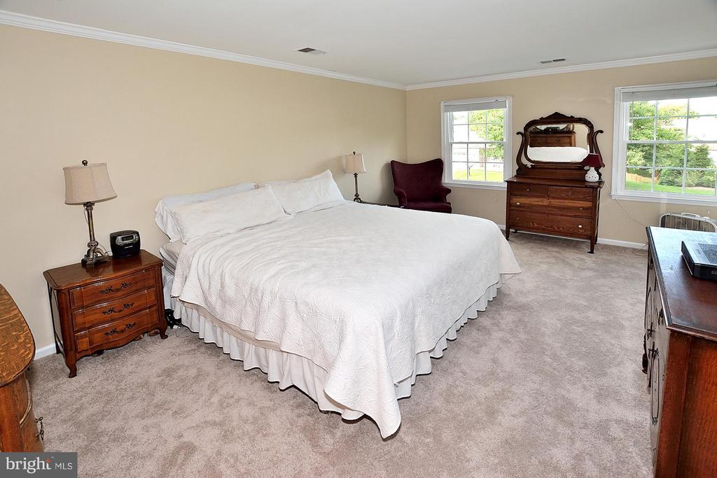 Large Master Bedroom with Lots of natural light - 5803 STONE RIDGE DR, CENTREVILLE