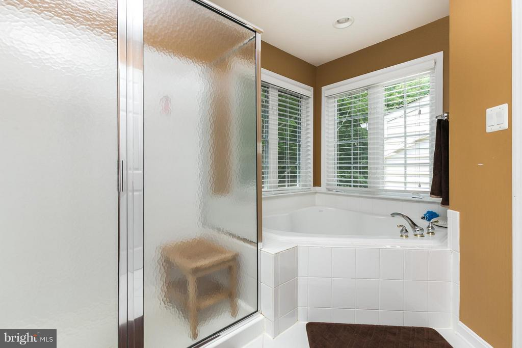 Relax in the large soaking tub - 20358 CENTER BROOK SQ, STERLING