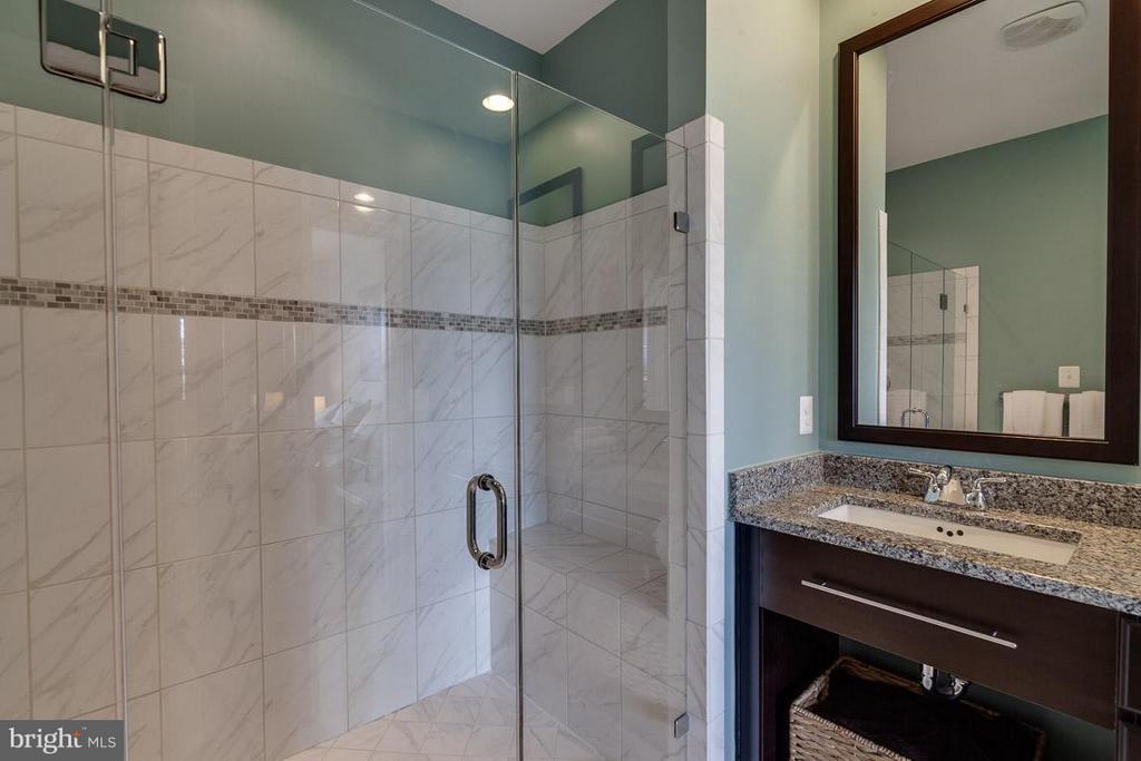 Bath (Master) - 42262 PALLADIAN BLUE TER, ASHBURN